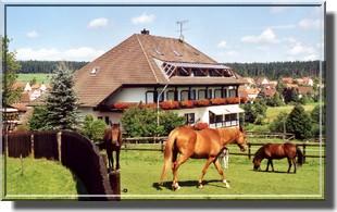 Hotel Pferdekoppel